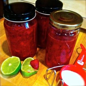 Simple Berry Sauce. MomsicleBlog