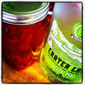 Raspberry Gin. MomsicleBlog