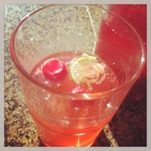 Raspberry Gin & Tonic. MomsicleBlog