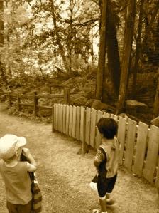 Audubon Society Portland. MomsicleBlog