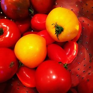 Tomatoes from Sara's Garden. MomsicleBlog