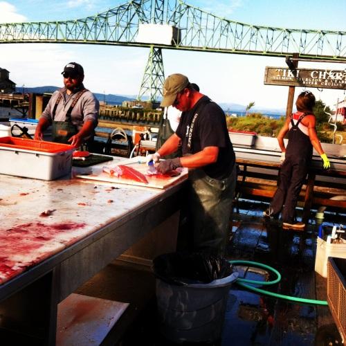 Astoria, Salmon-gutting. MomsicleBlog