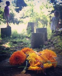 Flowers. MomsicleBlog