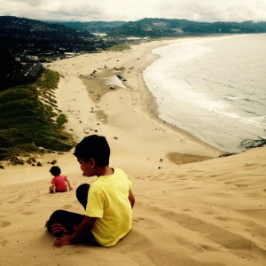 Oregon Coast Summer 2016. MomsicleBlog